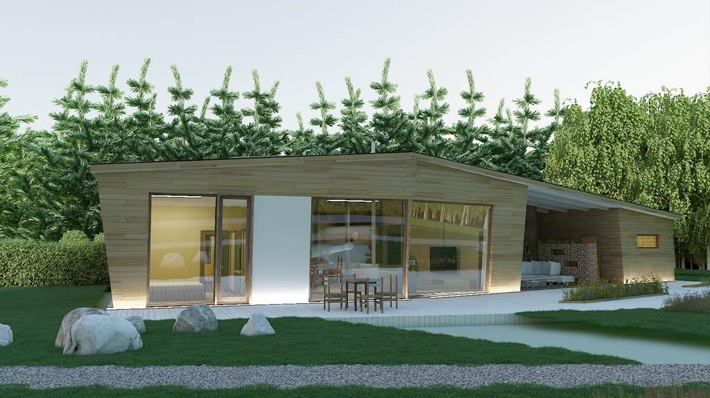Проект дома 1 этажного деревянного с террасой DI-2